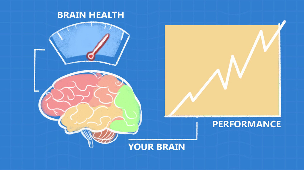 Full brainmeasure